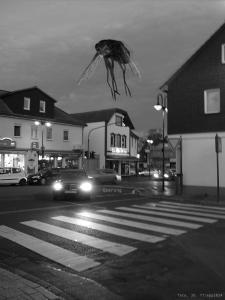[Querung mit Fliege, foto, 3D, 2015]