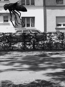 """Gerücht"", foto, 3D, 2015"